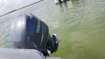 Lancha Pursuit 23.5 en venta con motor Yamaha 250 en Yucatán